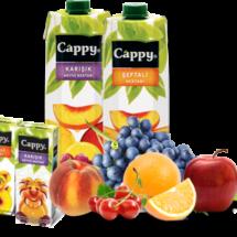 cappy-kutu